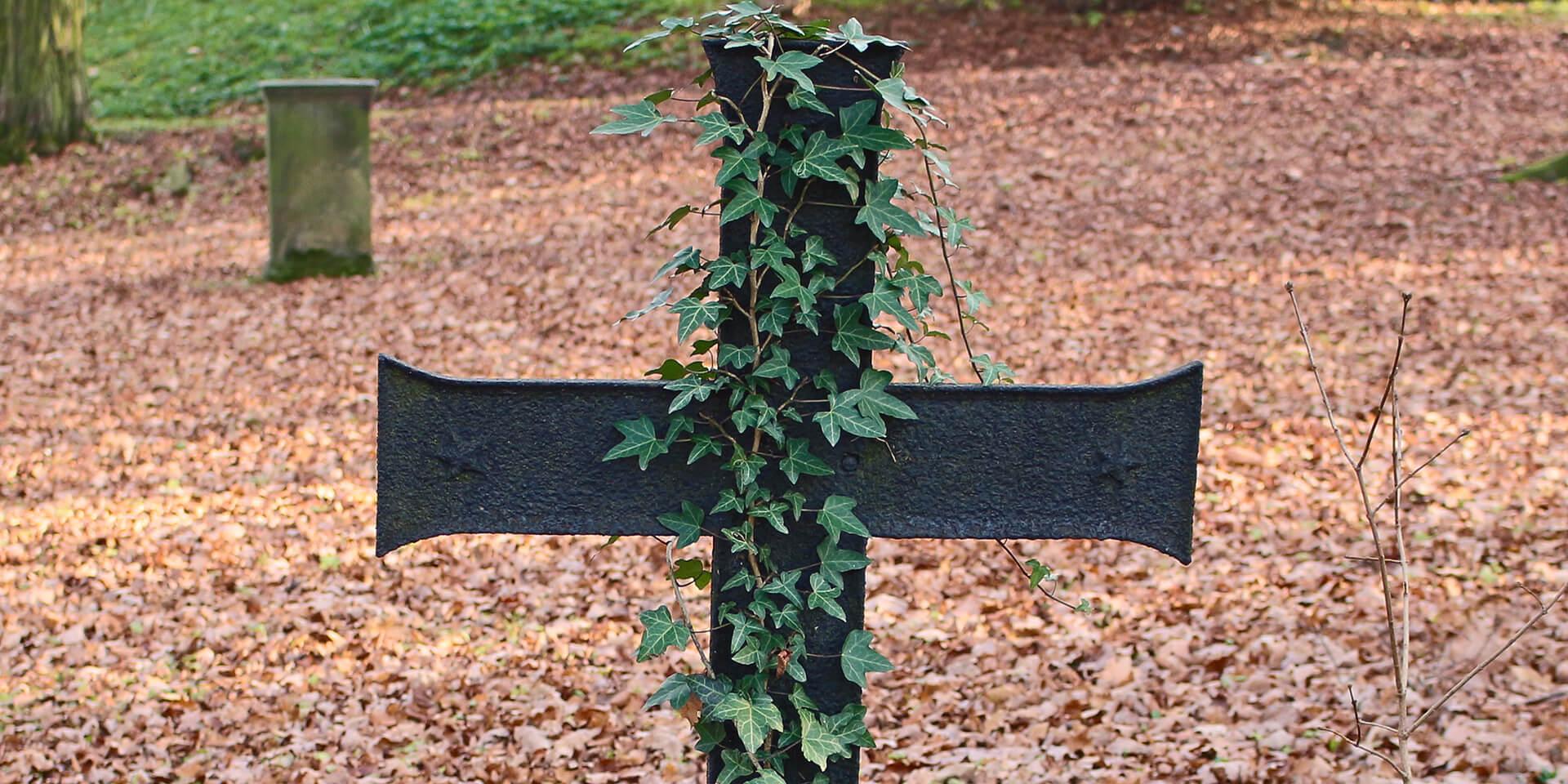 Das Bild zeigt ein Eisenkreuz
